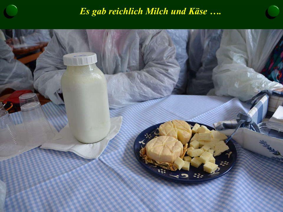 Es gab reichlich Milch und Käse ….