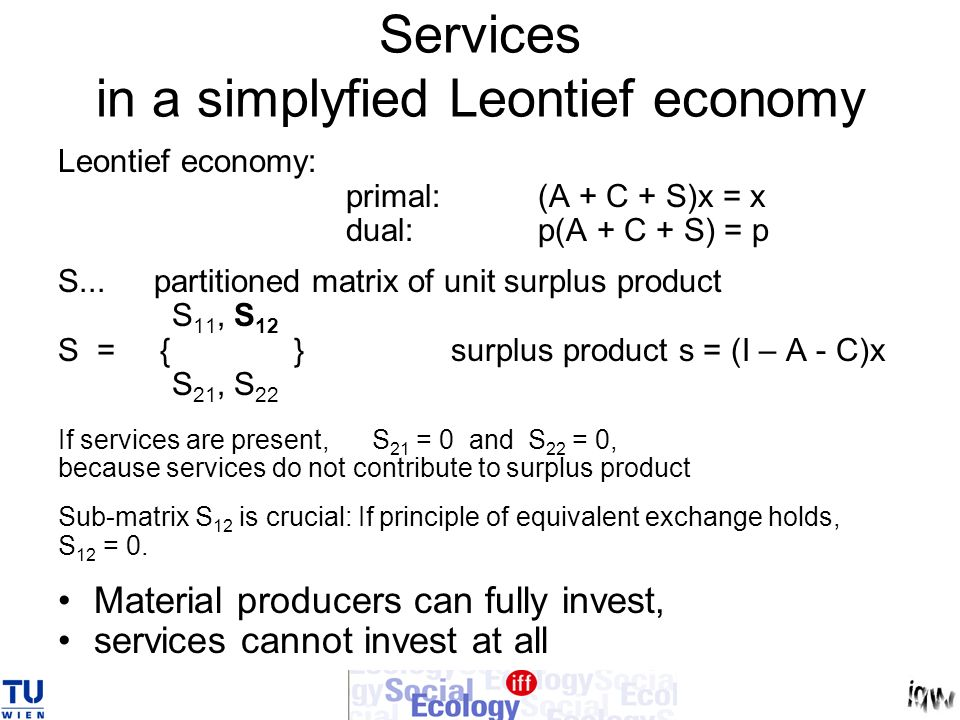 Services in a simplyfied Leontief economy