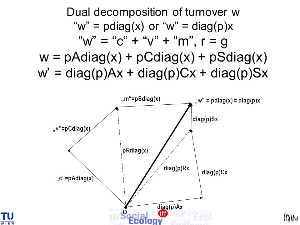 Dual decomposition of turnover w w = pdiag(x) or w = diag(p)x w = c + v + m , r = g w = pAdiag(x) + pCdiag(x) + pSdiag(x) w' = diag(p)Ax + diag(p)Cx + diag(p)Sx