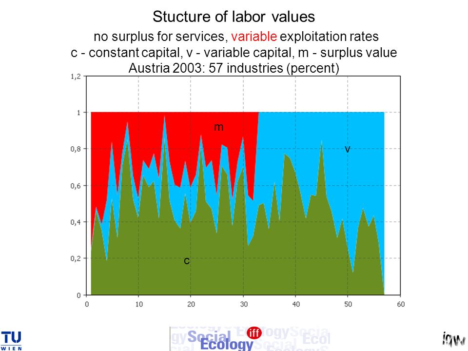 Stucture of labor values no surplus for services, variable exploitation rates c - constant capital, v - variable capital, m - surplus value Austria 2003: 57 industries (percent)