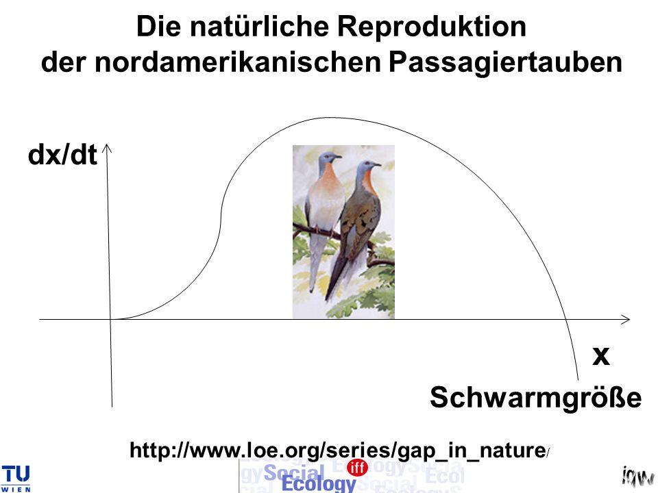 Die natürliche Reproduktion der nordamerikanischen Passagiertauben