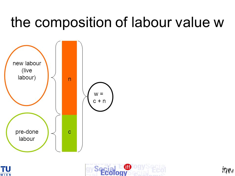 the composition of labour value w
