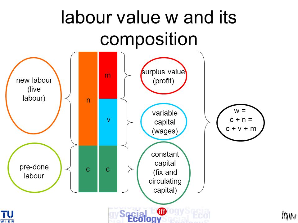 labour value w and its composition