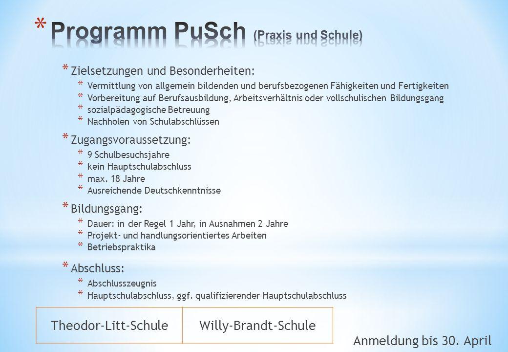 Programm PuSch (Praxis und Schule)