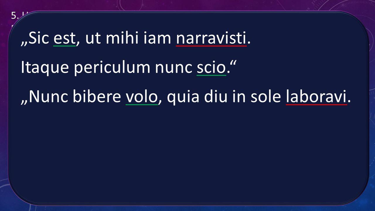 """""""Sic est, ut mihi iam narravisti. Itaque periculum nunc scio."""