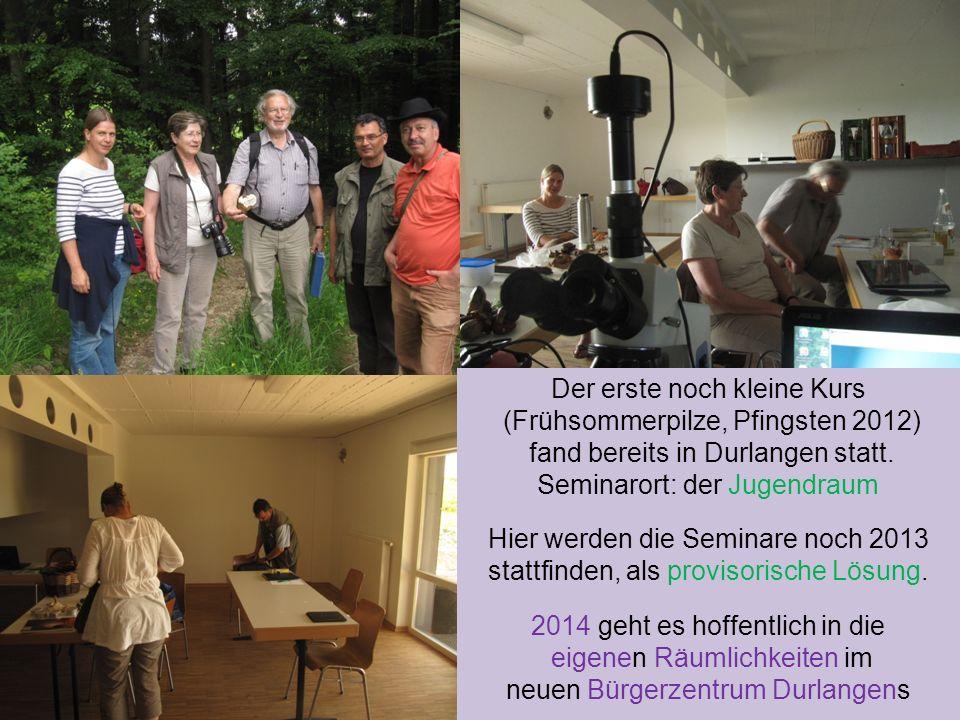 Der erste noch kleine Kurs (Frühsommerpilze, Pfingsten 2012)
