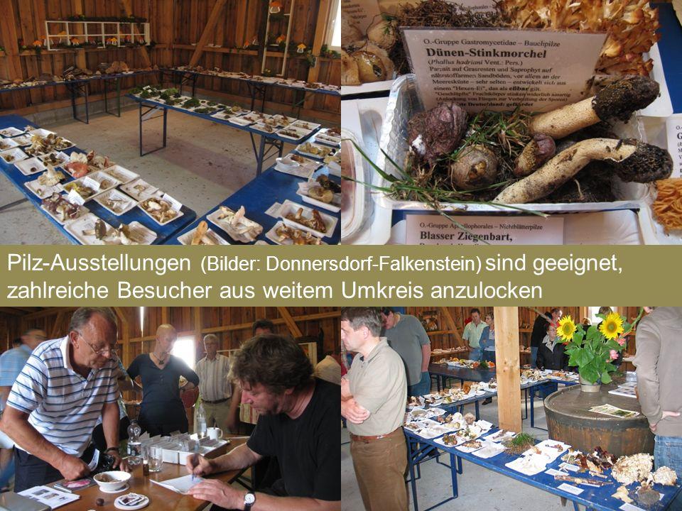 Pilz-Ausstellungen (Bilder: Donnersdorf-Falkenstein) sind geeignet, zahlreiche Besucher aus weitem Umkreis anzulocken