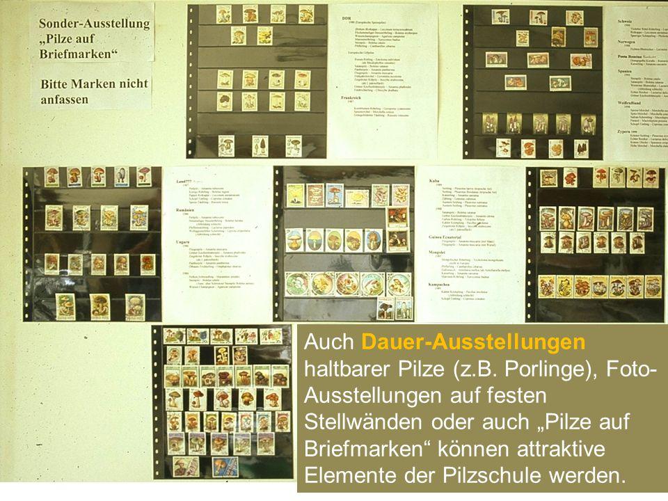 Auch Dauer-Ausstellungen haltbarer Pilze (z. B