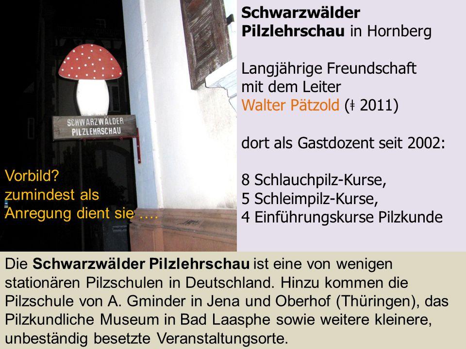 Schwarzwälder Pilzlehrschau in Hornberg