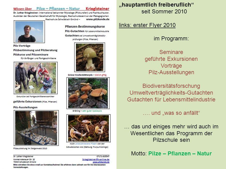 """""""hauptamtlich freiberuflich seit Sommer 2010 links: erster Flyer 2010"""