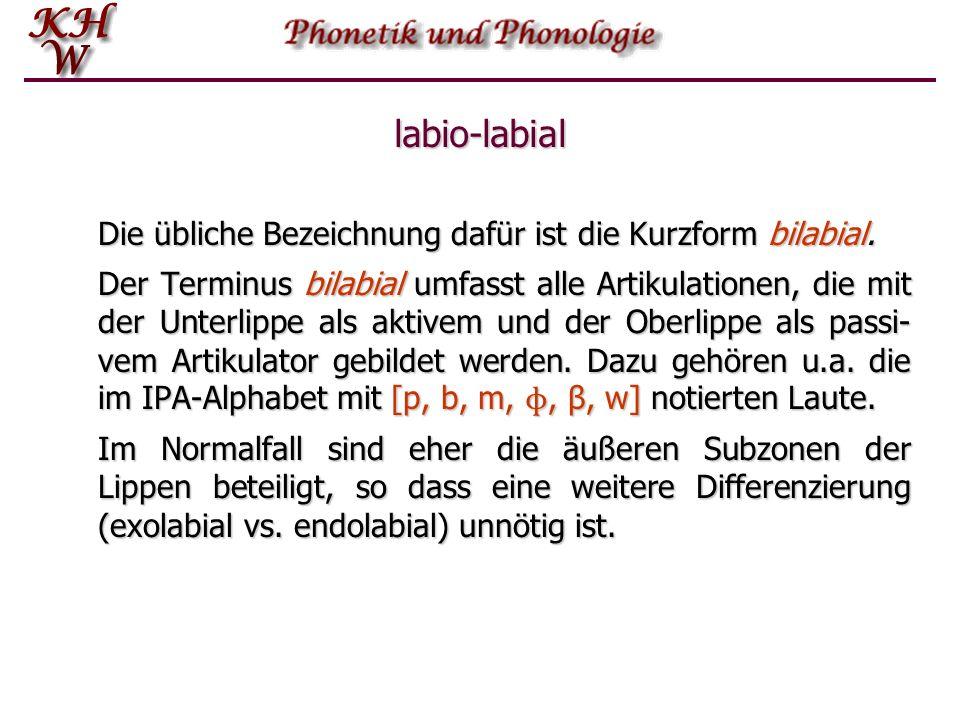 labio-labial Die übliche Bezeichnung dafür ist die Kurzform bilabial.