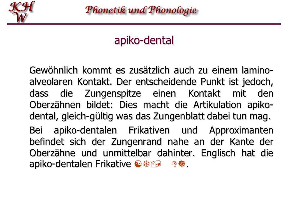 apiko-dental