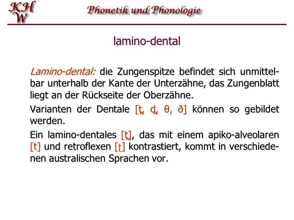 lamino-dental