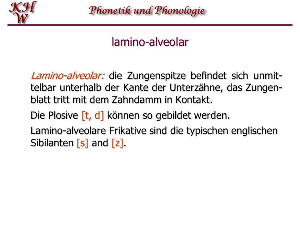 lamino-alveolar