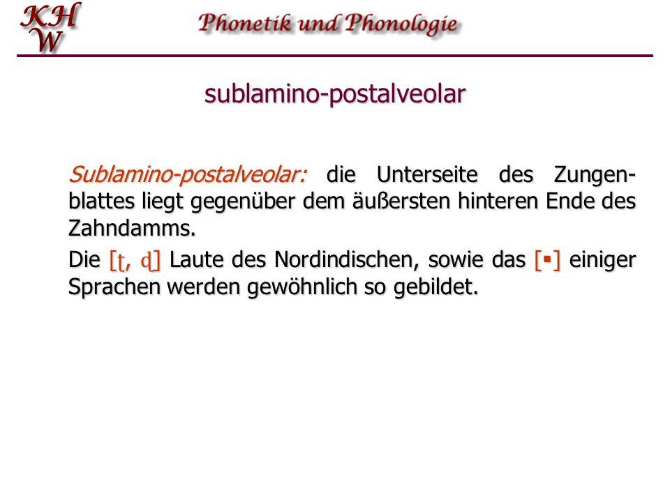 sublamino-postalveolar