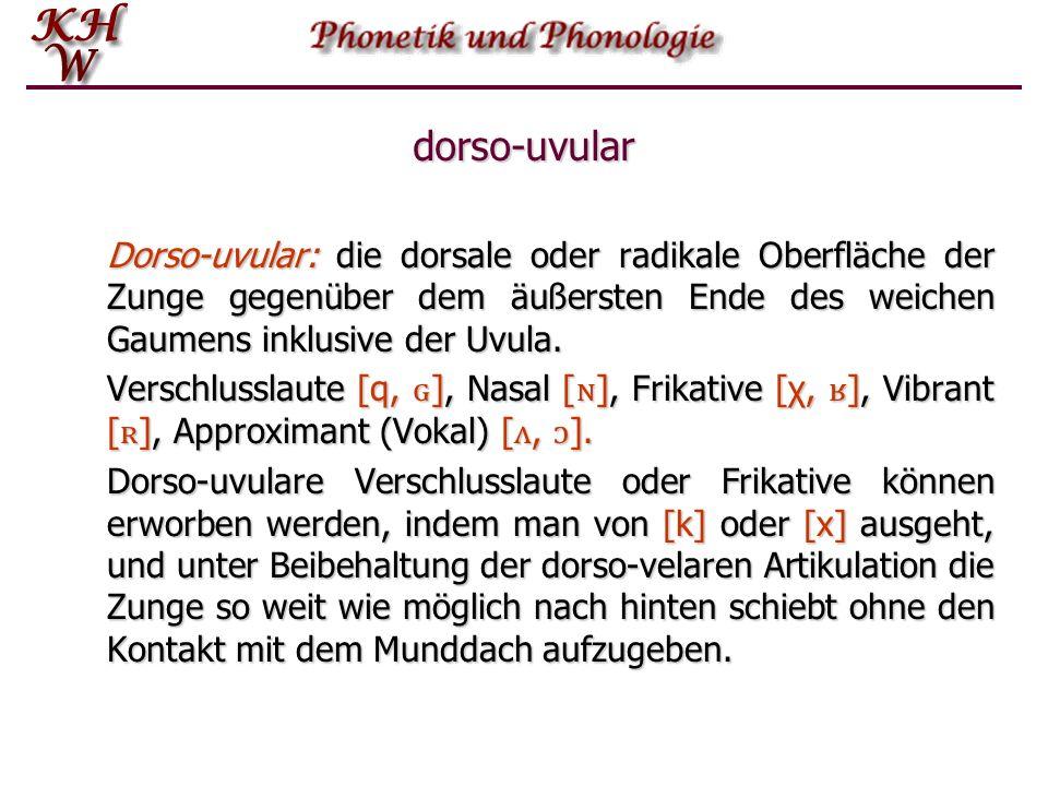 dorso-uvular Dorso‑uvular: die dorsale oder radikale Oberfläche der Zunge gegenüber dem äußersten Ende des weichen Gaumens inklusive der Uvula.
