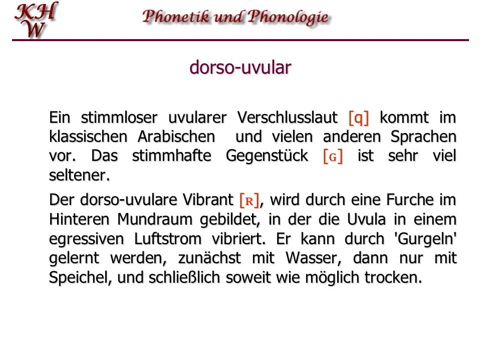 dorso-uvular