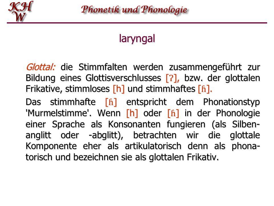 laryngal