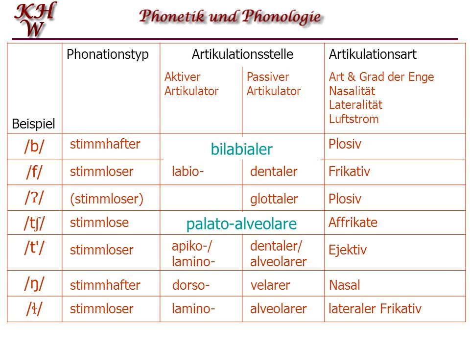 /b/ /f/ /Ɂ/ /tʃ/ /t / /ŋ/ bilabialer /ɬ/ palato-alveolare Beispiel
