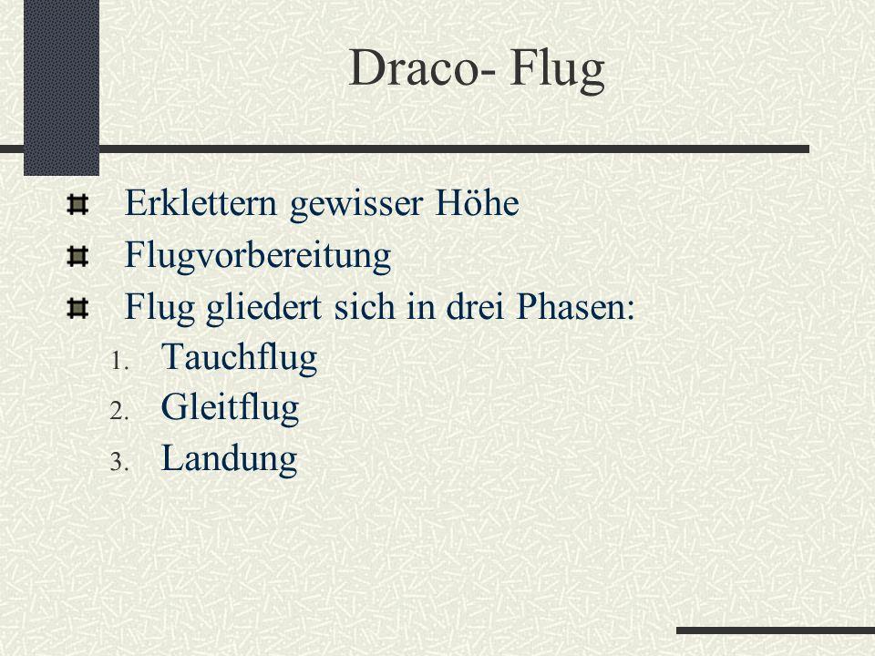 Draco- Flug Erklettern gewisser Höhe Flugvorbereitung