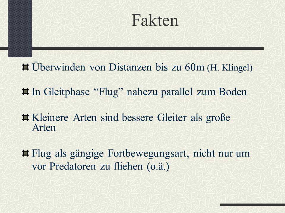 Fakten Überwinden von Distanzen bis zu 60m (H. Klingel)