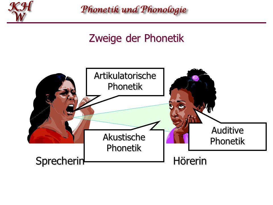 Zweige der Phonetik Sprecherin Hörerin Lautübertragung Lautproduktion