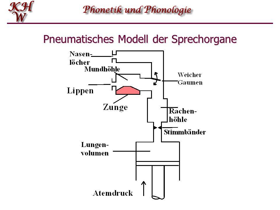 Pneumatisches Modell der Sprechorgane
