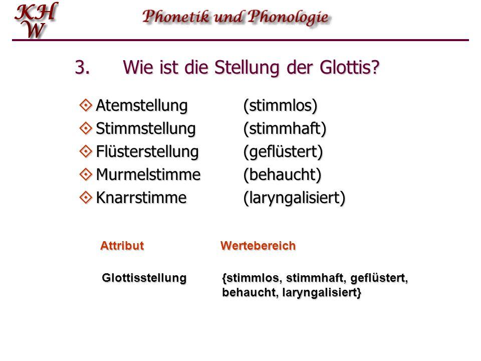 3. Wie ist die Stellung der Glottis