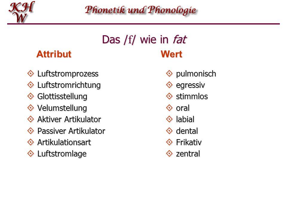Das /f/ wie in fat Attribut Wert Luftstromprozess Luftstromrichtung