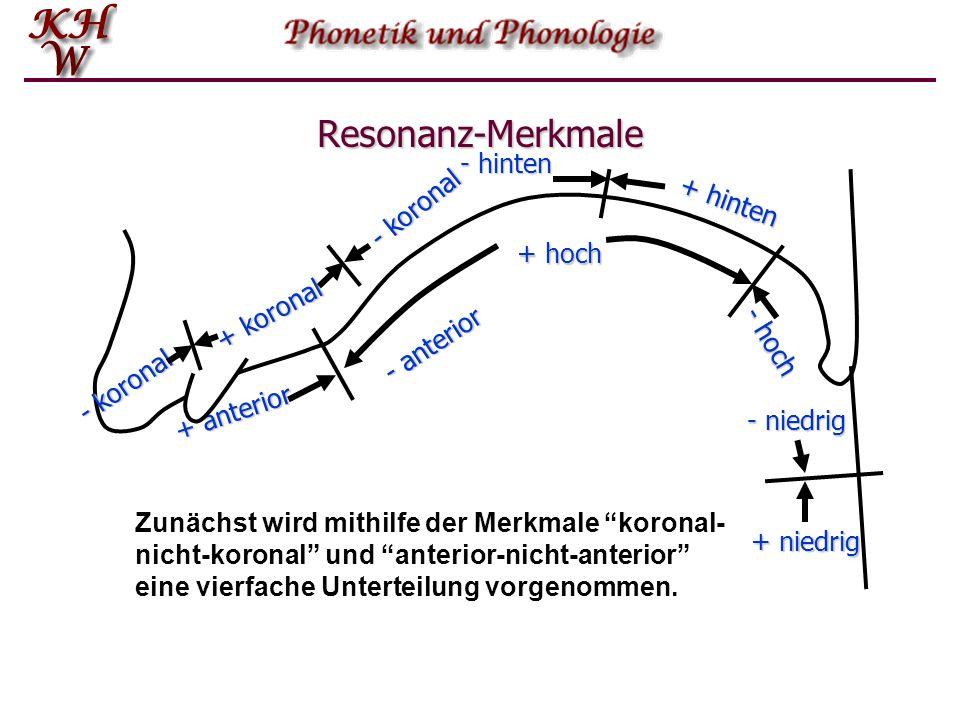 Resonanz-Merkmale - hinten - koronal + hinten + hoch + koronal
