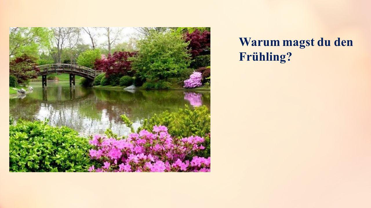 Warum magst du den Frühling