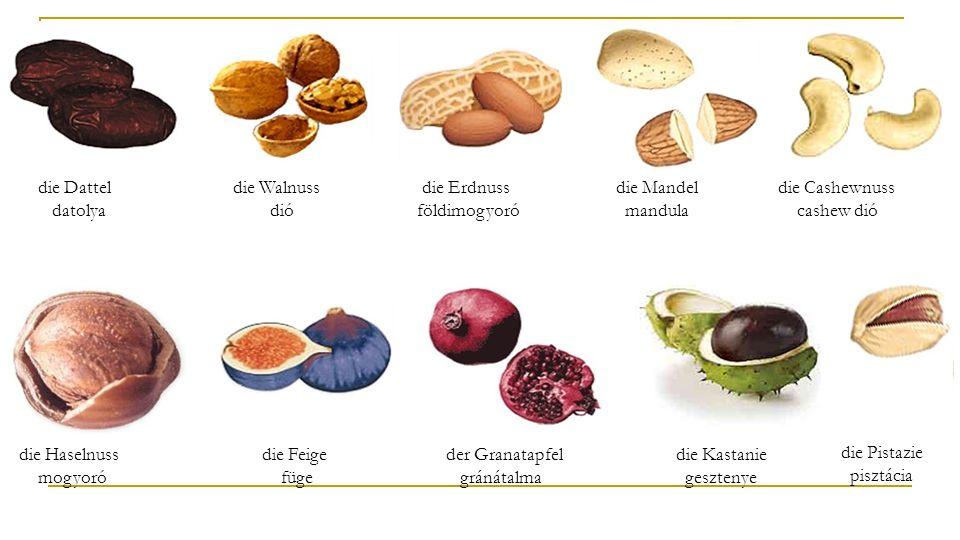die Dattel datolya die Walnuss dió. die Erdnuss földimogyoró. die Mandel mandula.