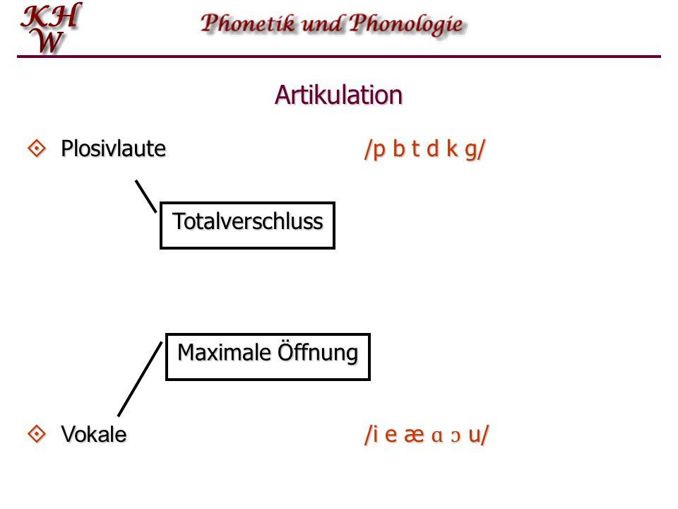 Artikulation Plosivlaute /p b t d k g/ Totalverschluss