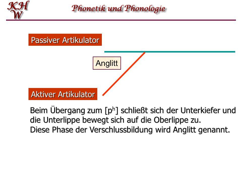 Passiver Artikulator Anglitt. Aktiver Artikulator.