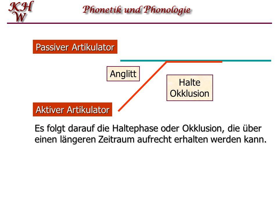 Passiver Artikulator Anglitt. Halte. Okklusion. Aktiver Artikulator.
