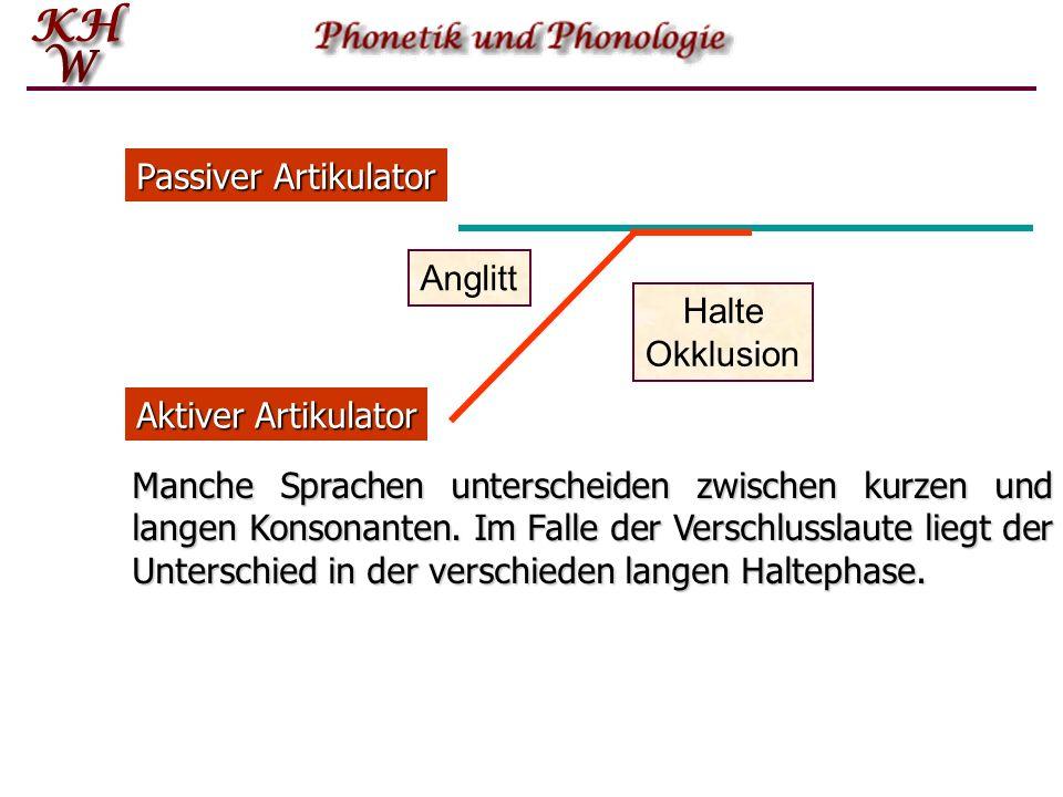 Passiver Artikulator Halte. Okklusion. Anglitt. Aktiver Artikulator.