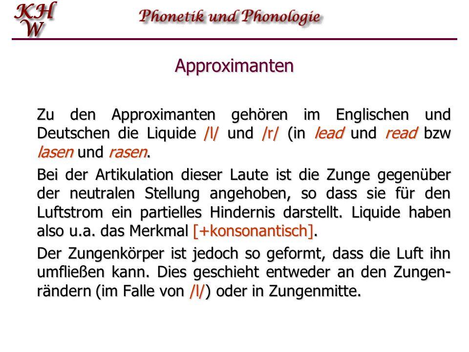 Approximanten Zu den Approximanten gehören im Englischen und Deutschen die Liquide /l/ und /r/ (in lead und read bzw lasen und rasen.