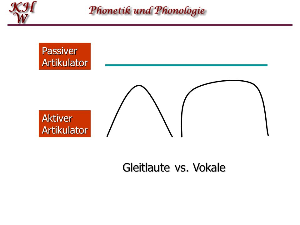 Passiver Artikulator Aktiver Artikulator Gleitlaute vs. Vokale