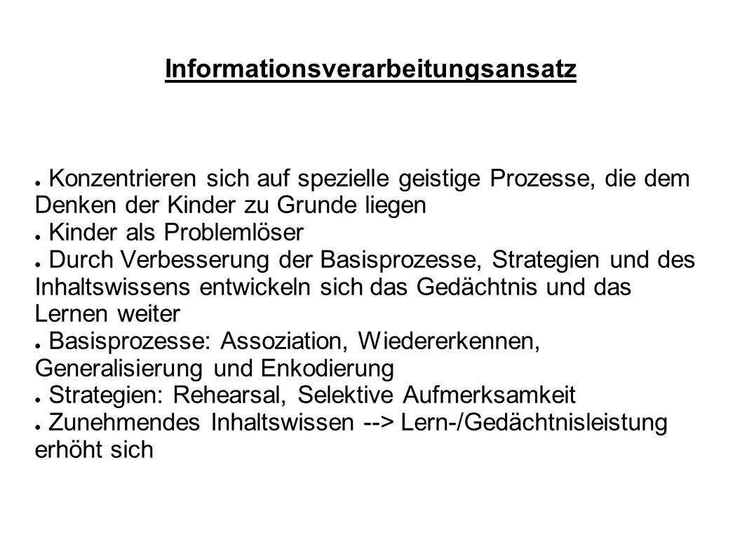 Informationsverarbeitungsansatz