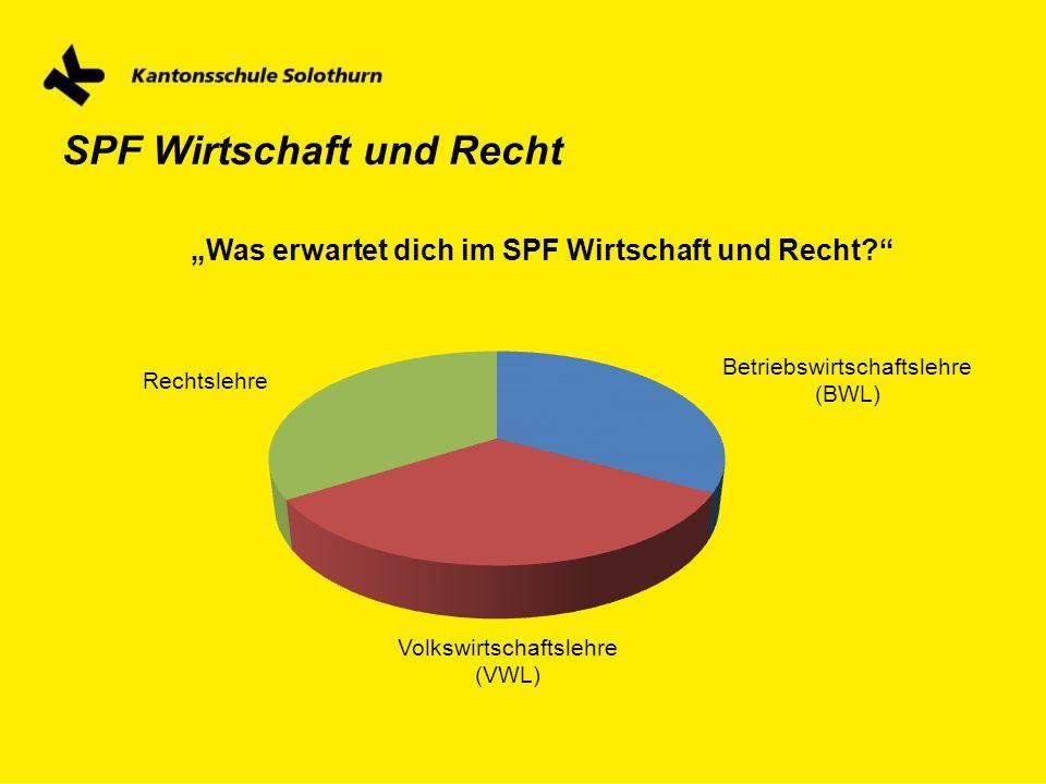 """""""Was erwartet dich im SPF Wirtschaft und Recht"""