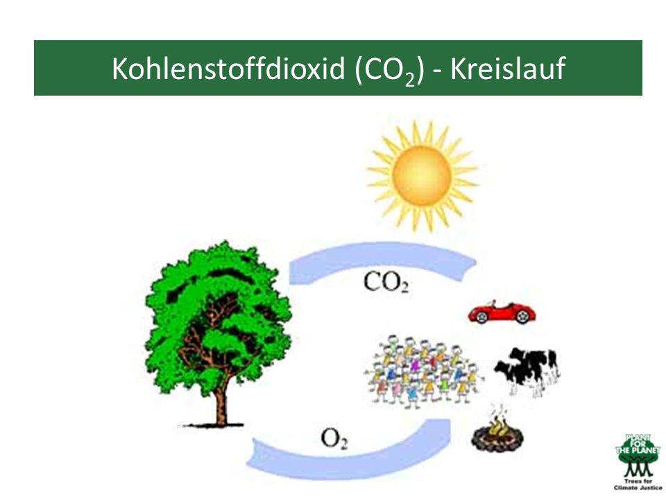Kohlenstoffdioxid (CO2) - Kreislauf