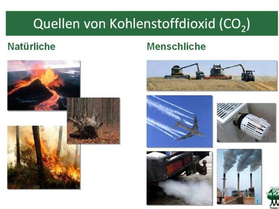 Wo kommt denn das CO2 überhaupt her