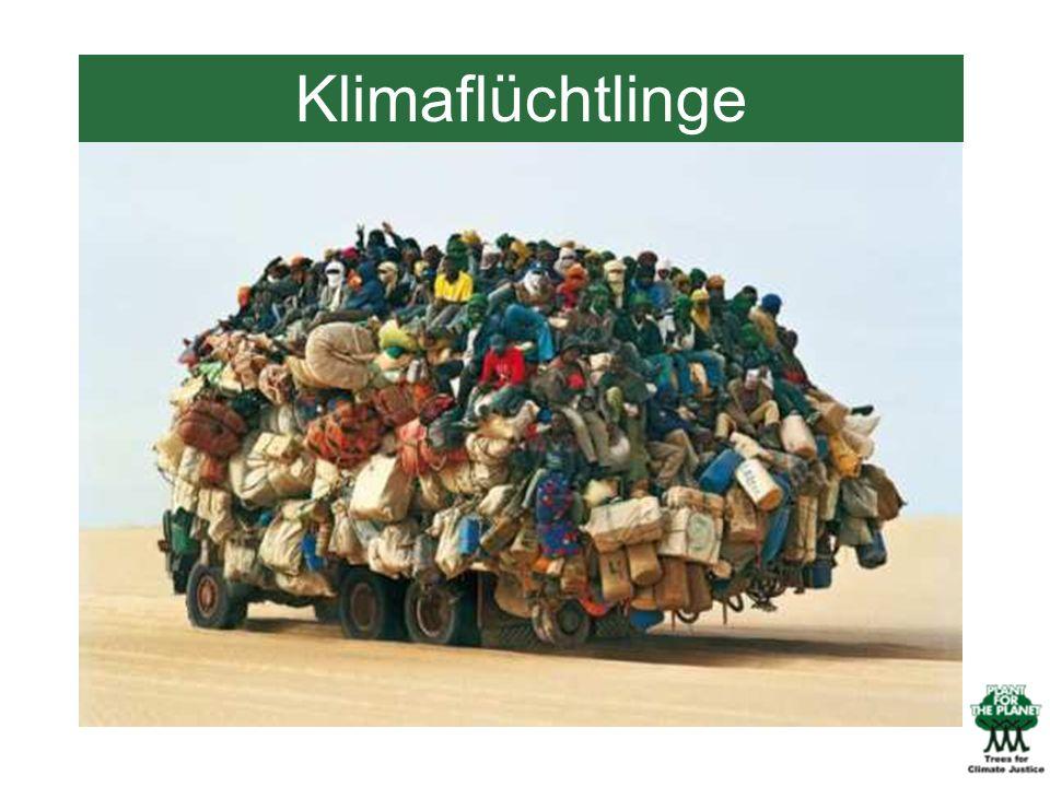 Klimaflüchtlinge Klimaflüchtlinge!