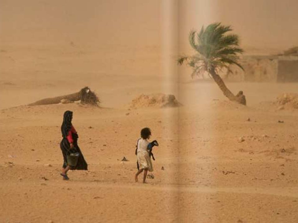 21.03.2017 … oder sich ausbreitenden Wüsten in Afrika.