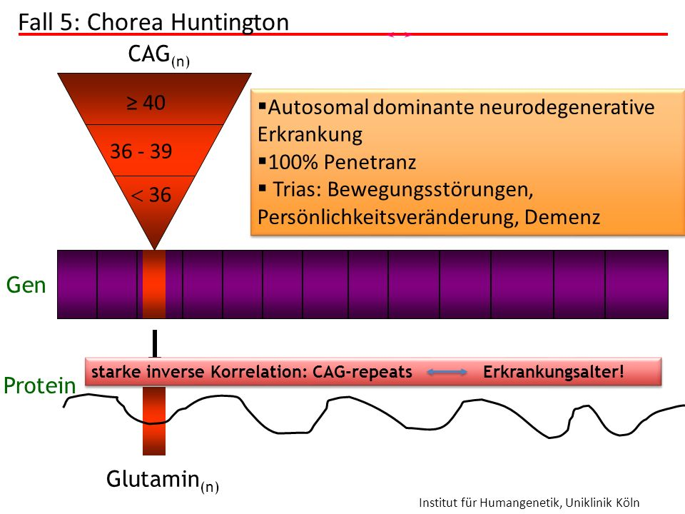 Fall 5: Chorea Huntington