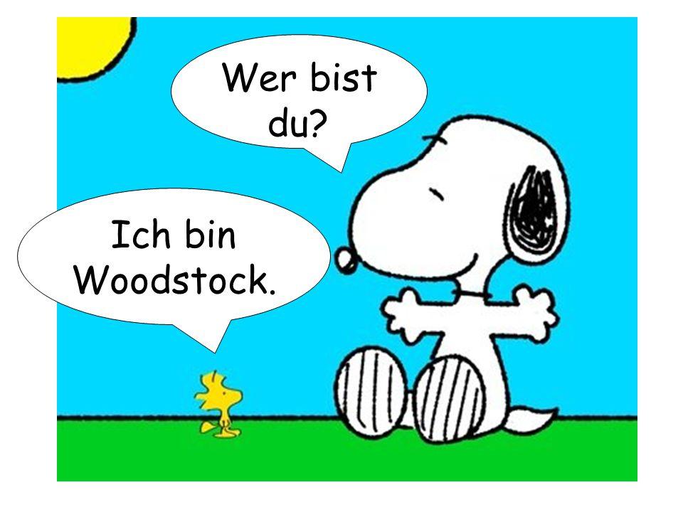 Wer bist du Ich bin Woodstock.