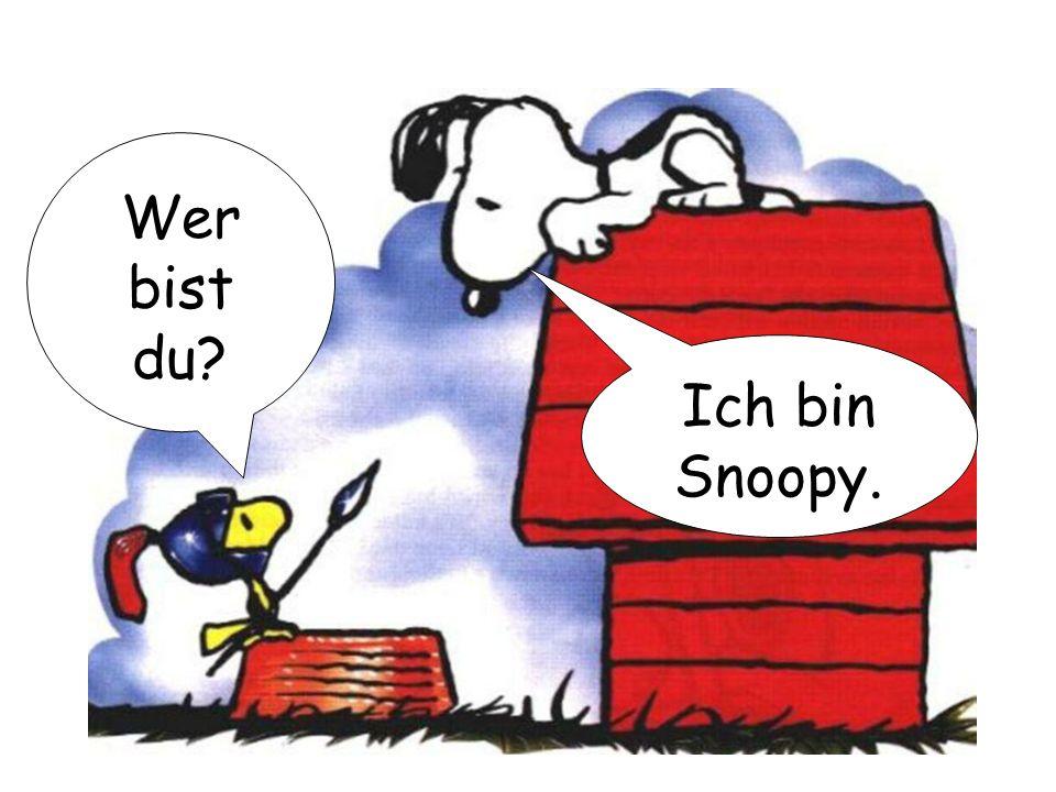 Wer bist du Ich bin Snoopy.