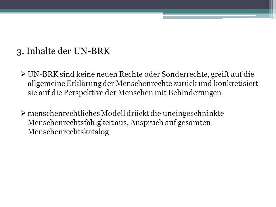 3. Inhalte der UN-BRK