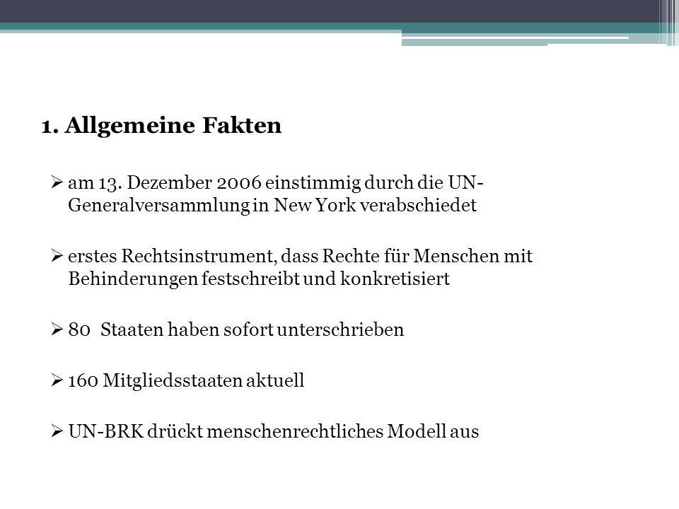 1. Allgemeine Fakten am 13. Dezember 2006 einstimmig durch die UN- Generalversammlung in New York verabschiedet.