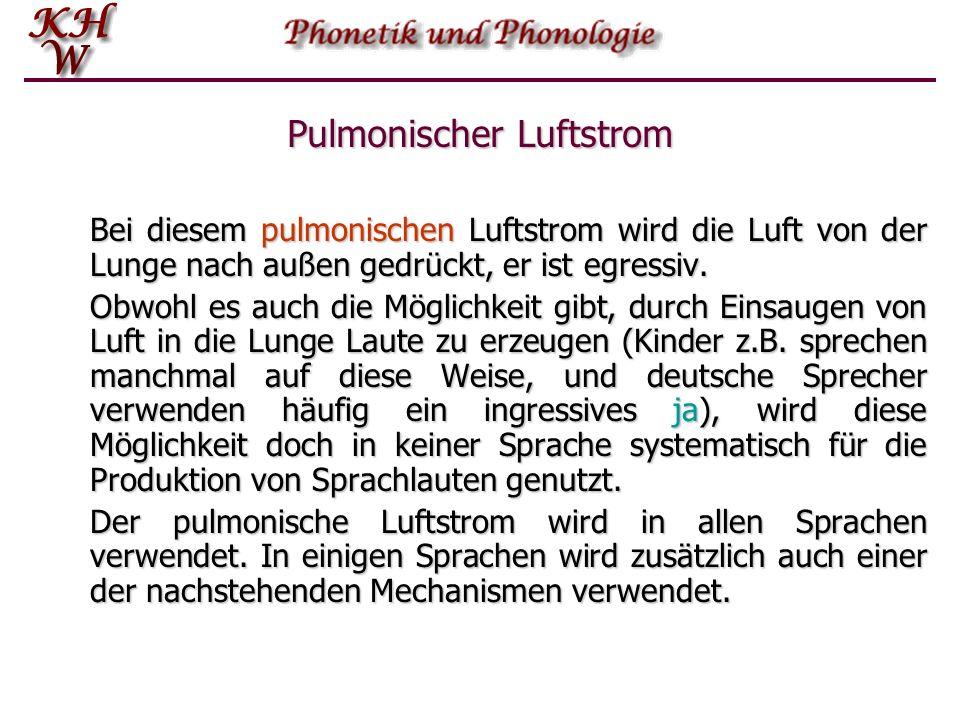 Pulmonischer Luftstrom